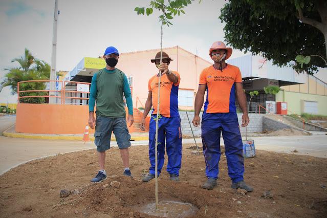 Moda Center celebra Semana Mundial do Meio Ambiente com plantio de árvores