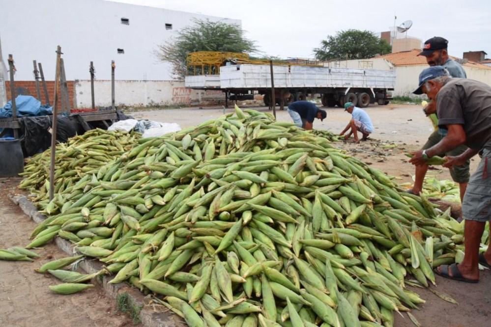 Comerciantes de milho otimistas com as vendas em Santa Cruz do Capibaribe