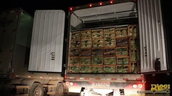 Verduras transportadas em caminhão câmara fria estão comprometidas