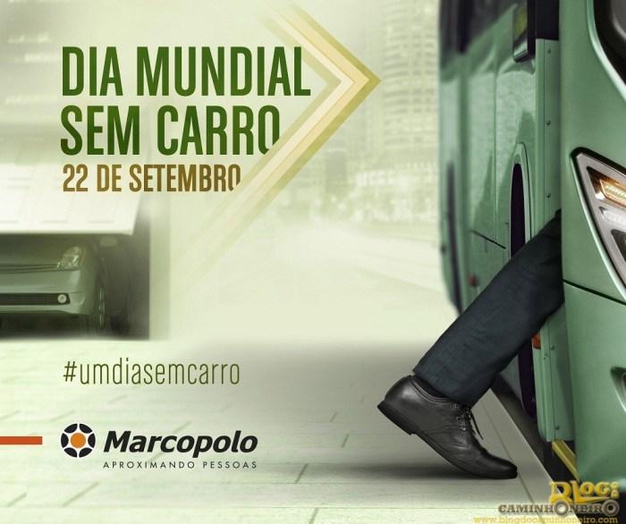 cartazdiamundialsemcarro2014