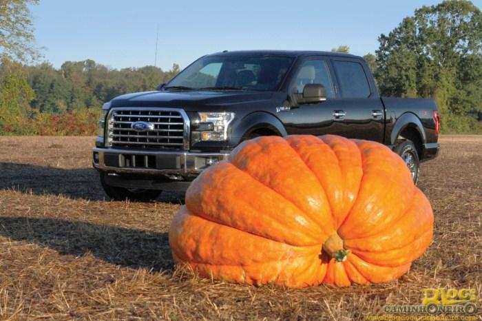 f150-pumpkin01