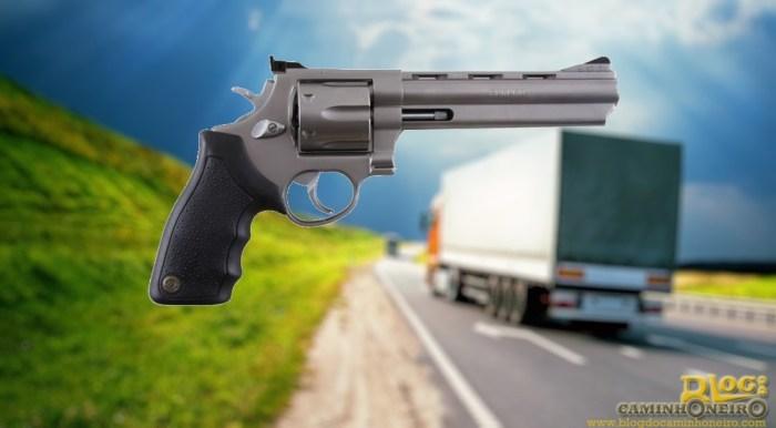 caminhoneiro armas