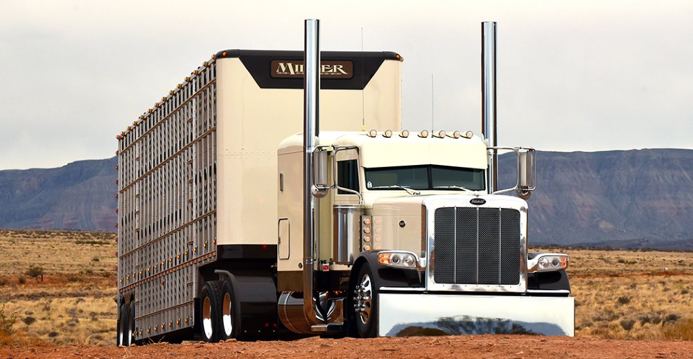 Nos EUA, falta de caminhoneiros pode afetar custos de frigoríficos