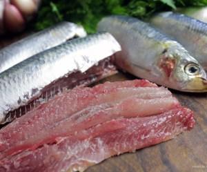 Como limpar e filetar sardinhas