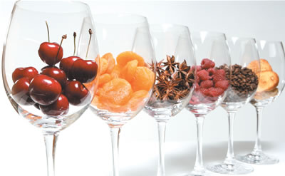 Como e porque conservar um (bom) vinho – Parte I