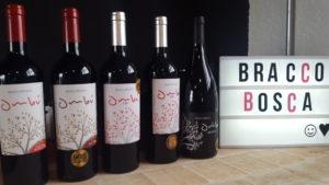 """Os vinhos degustados - homogeneidade qualitativa com destaque para o incrível Cabernet Franc. Sinal que o Uruguai não é somente a """"terra da tannat"""""""