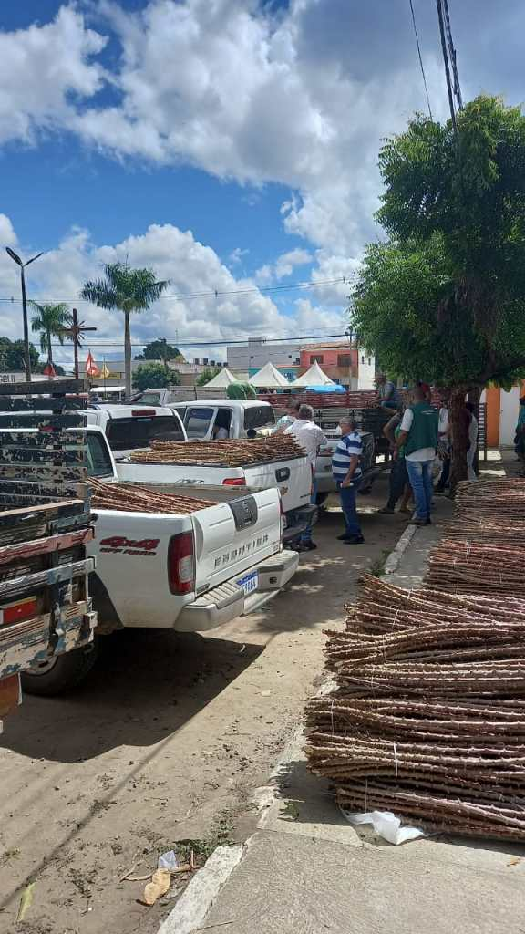 "CINCO MIL SEMENTES – Lucena adere a projeto ""Arranjo Positivo da Mandiocultura"""