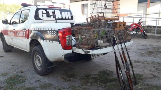 Polícia apreende 13 aves silvestres e quatro armas usadas em caça na Paraíba