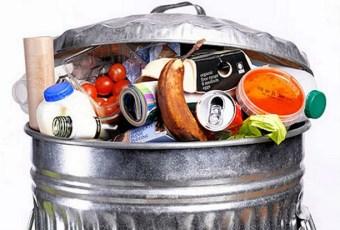 alimento comida lixo