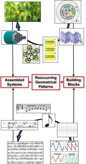 A matemática entre uma teia de aranha e a música!