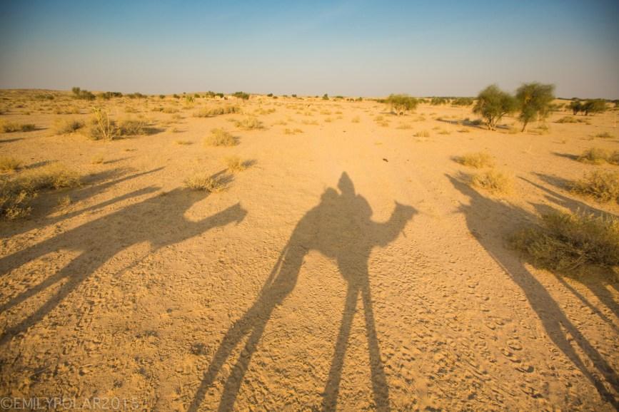Jaisalmer_Camel_Safari_141202-300