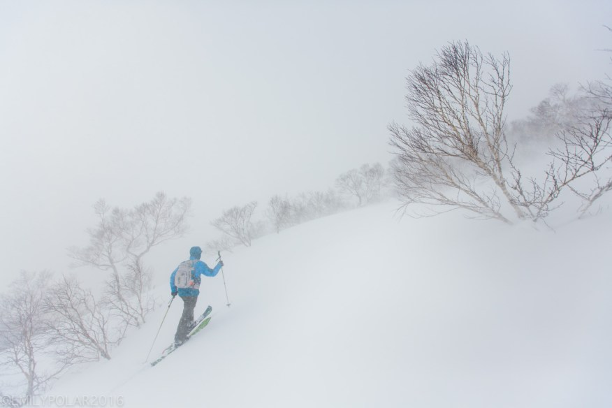 Snowboarders skinning in white out conditions in Nito backcountry in Niseko, Japan.