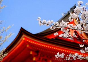 KYOTO - Sue Ann Simon - Kiyomizudera Temple