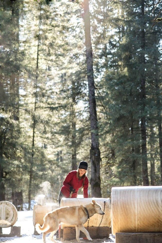 Real Women Model Amanda Vogel caring for Alaskan sled dogs