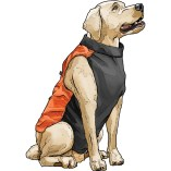Scout's Upland Hunting Vest #47702