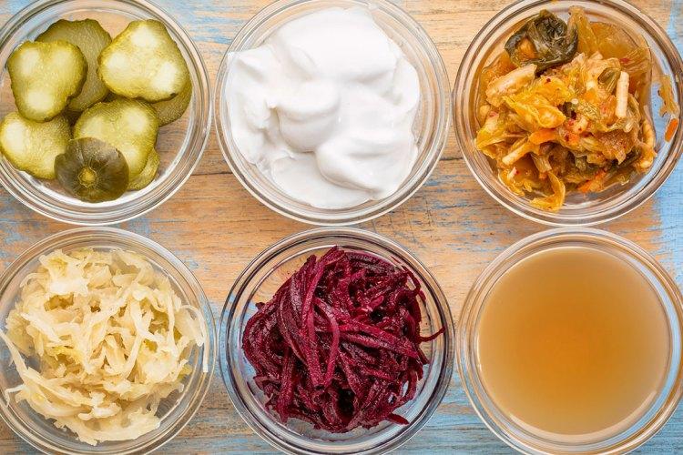 Probioticos importantes en la alimetación