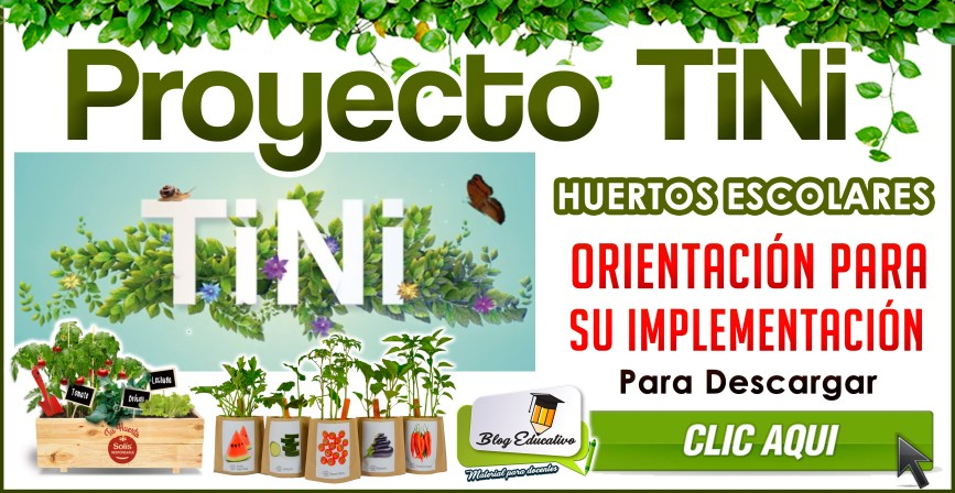 Proyecto TiNi - Orientación para su implementación
