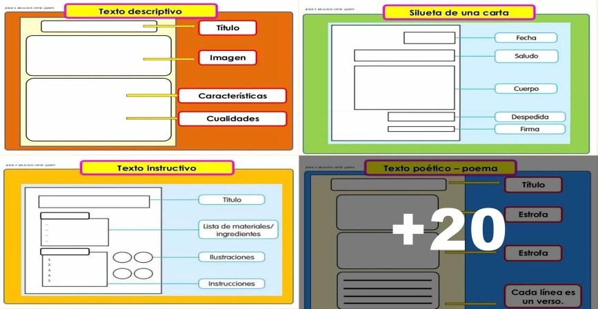 Formatos para escribir textos y organizadores gráficos para facilitar la comprensión de lo leído