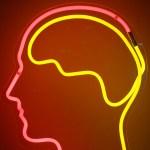 Les 3 lois de fonctionnement de notre cerveau