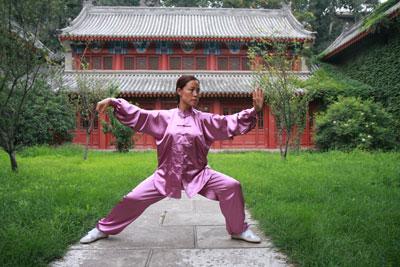 Yan HE en Chine (2009)
