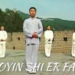Qi Gong des 12 mouvements : Dao Yang Sheng Gong Shi Er Fa – l'un des Qi Gong officiels