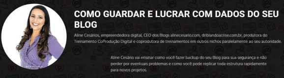 seo-sem-segredos-backup-blog-aline-cesario