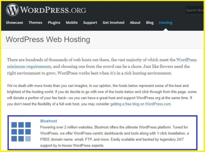 Is Bluehost a best hosting for your site