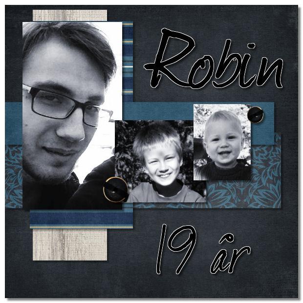 Robin19