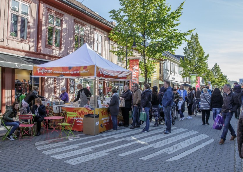 Foto: Øystein Nordås