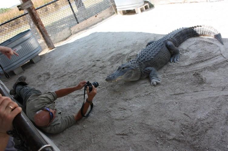 """""""Gator"""" fotar på Wooten's"""