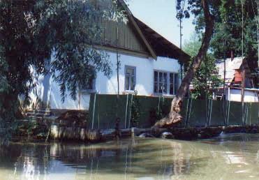 Из окон местных домов можно рыбку половить, а можно и понырять.