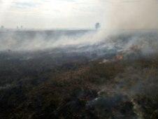 степной пожар степова пожежа