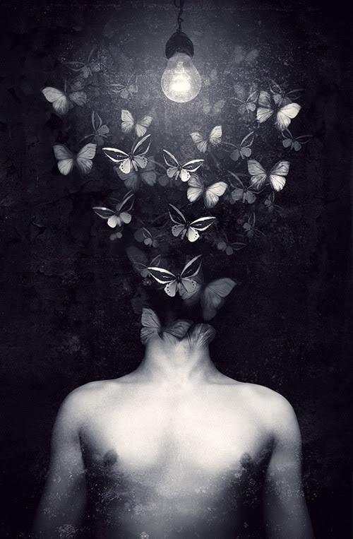 Thoughts arrive like butterflies...