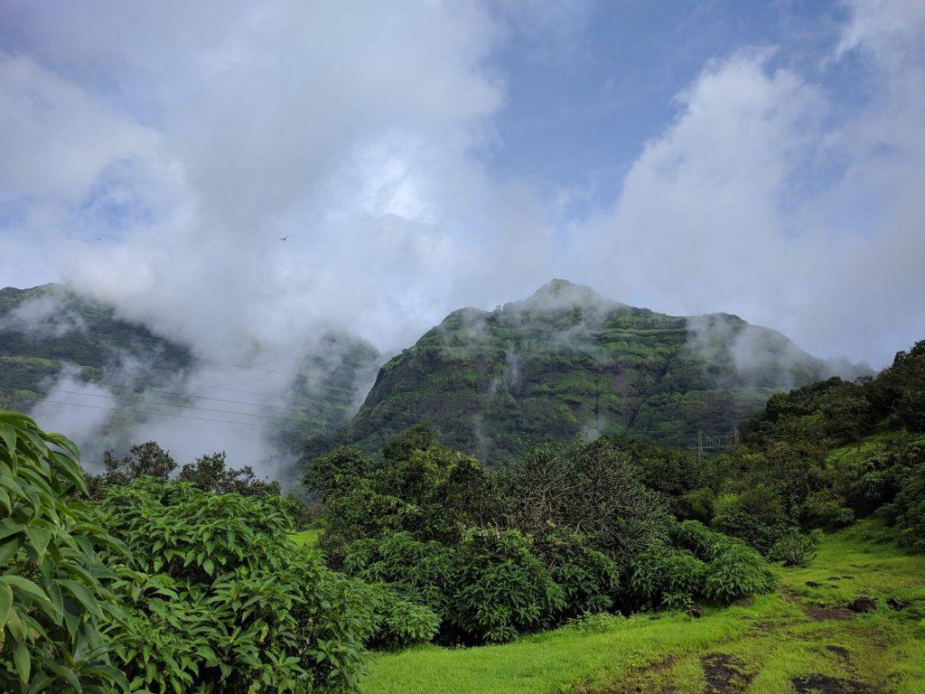 IMG 20200926 094508 Andharban Jungle trek Pune
