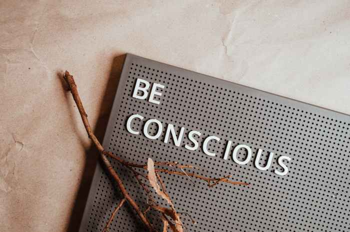 Consciousness a key to understanding our existence.