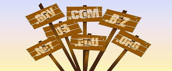 Top Domain Name