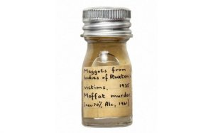 wellcome-maggots-1024x640