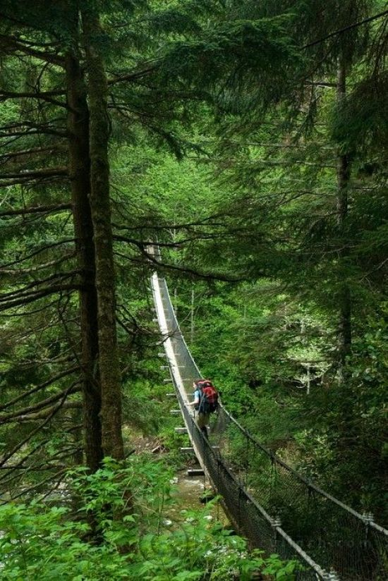 10 Misconceptions About the Pacific Northwest