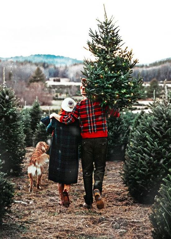 Holiday Bucket List: 28 Fun Activities To Complete This Holiday Season!