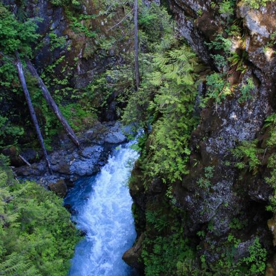 Easy Mountain Hikes For The Beginner