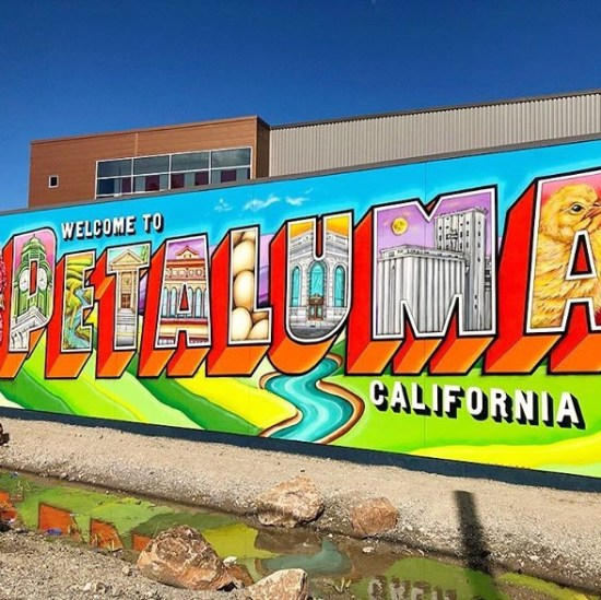6 Cheap And Inspiring Adventures To Take Near Sonoma State
