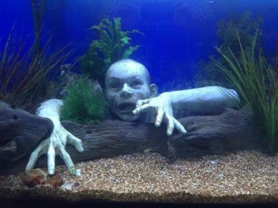 10 Halloween Decorations To Make Your Home Spookier