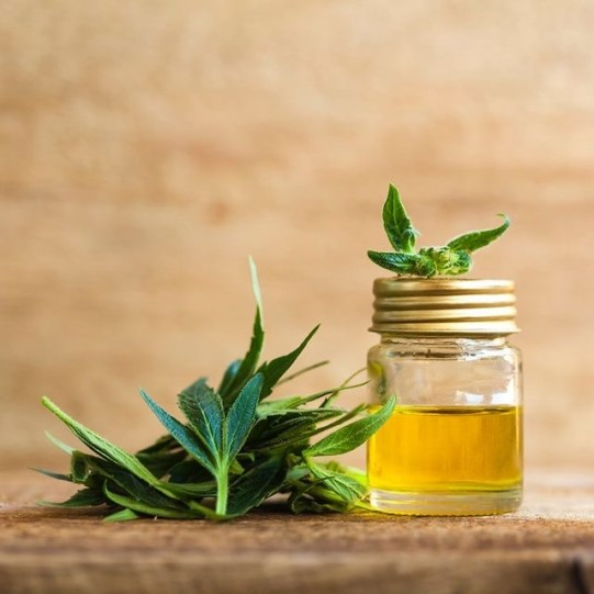 CBD oil has become a health craze that comes in many forms. If you are thinking about trying it, read this to find out everything you need to know.