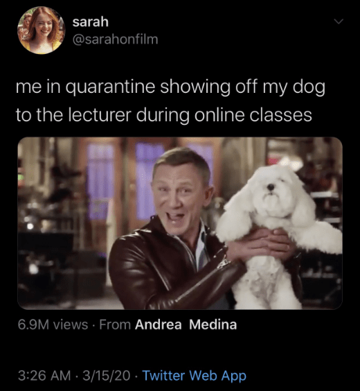 The Best Quarantine Memes To Get You Through Social Distancing