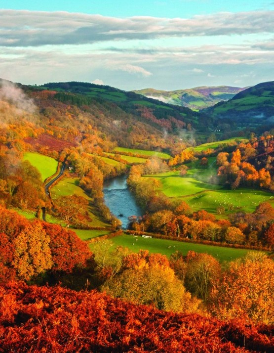 Here's Exactly Where You Need To Go To View The Foliage In The UK