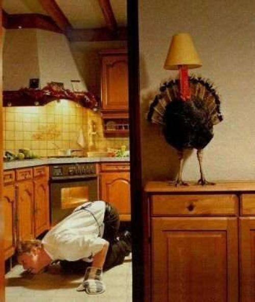 13 Thanksgiving Pictures That Will Definitely Make You Laugh