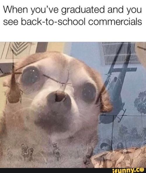 20 Back To School Memes That Will Make You LOL