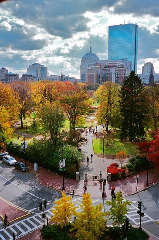 8 Events In Boston That You Can't Miss Out On