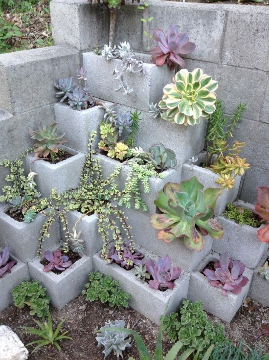 10 Small gardening ideas that will brighten your yard