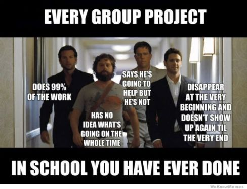 """Meme with text: Every Group project in school you have ever done"""""""